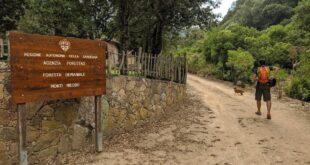 parco regionale gutturu mannu