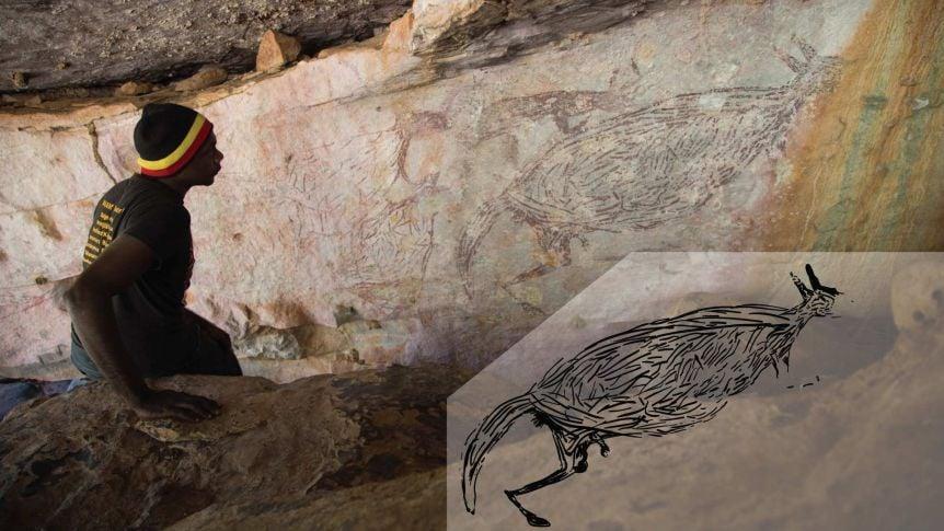 australia canguro roccia canguro animale dipinto