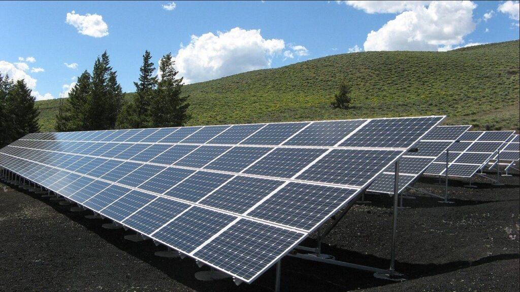 celle solari,