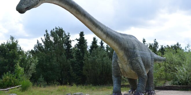 dinosauri, erbivori, nordamerica