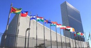 nazioni unite dvd 1