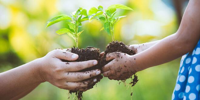 sostenibilita ambientale