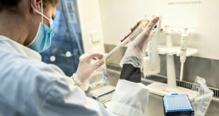 variante inglese sintomi contagio vaccino