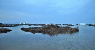 stintino piano utilizzo litorali
