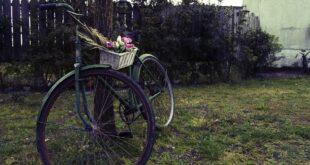 bike 1807159 1920