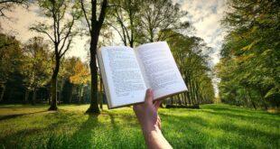 Leggere in giardino