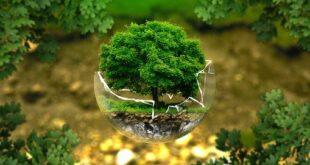 environmental protection 326923 340