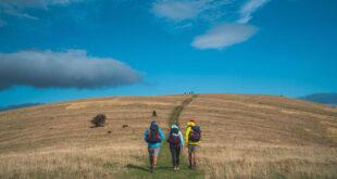 va sentiero guida online inglese
