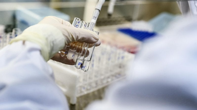 anticorpo ricerca
