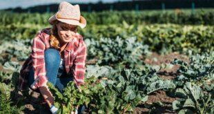 1 Giovani agricoltori