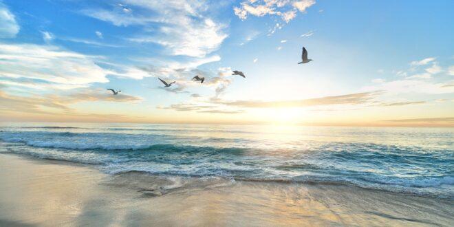 mare, spiaggia