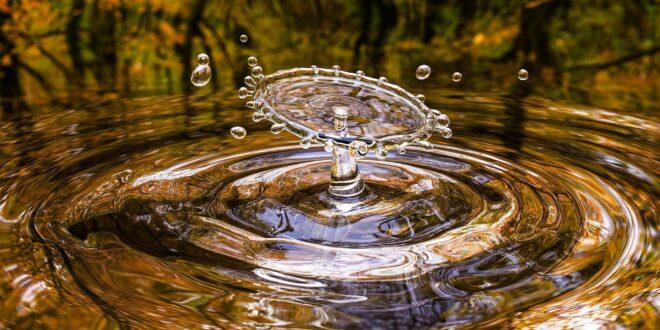 acqua servizi