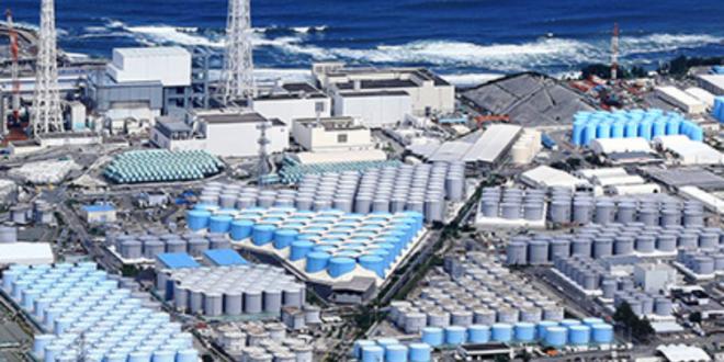 fukushima depositi.png 1983368987