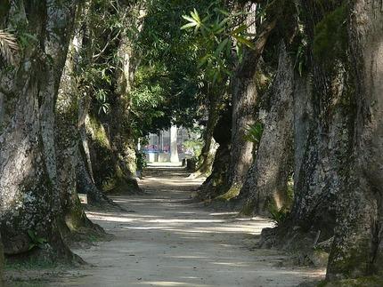 Giardino Botanico del Monte Arci - apre al pubblico
