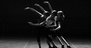 danza d'autore contemporanea.