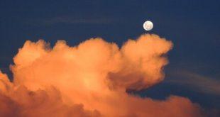 Sul Lungoluna: Capu de su Moru