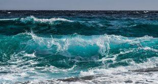 wave, mare onde lavoro