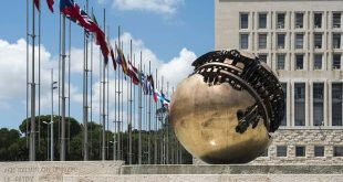 cooperazione ministero degli esteri