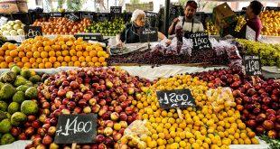 frutta e verdura piombo cibi ue