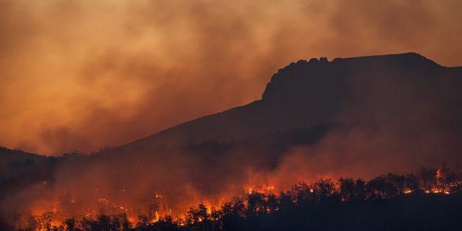 incendio cambiamento clima caldo
