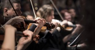 violins 1838390 1920