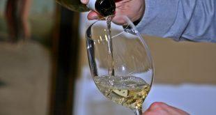 wine 786925 1920