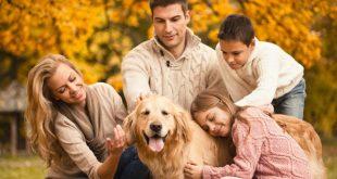 Sondaggio, animali parte della famiglia